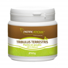 Tribulus Terrestris en poudre en pot PEHD inviolable de 250 grammes lot de 2