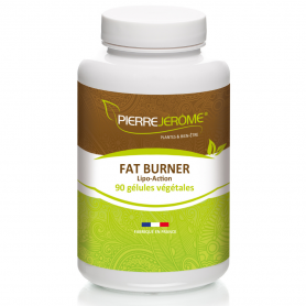 Fat Burner - 90 gélules végétales lot de 4